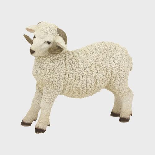 Krippenfigur Schaf stehend mit Hörner 31cm groß
