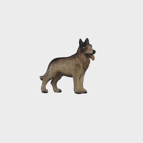 Advent 157 Krippenfigur aus Eschenholz Schäferhund