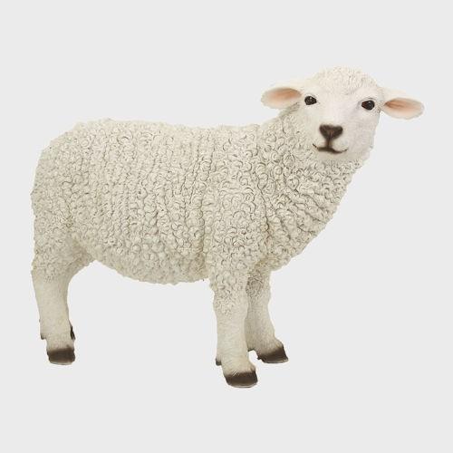 Krippenfigur Schaf stehend rechtsschauend 30cm groß